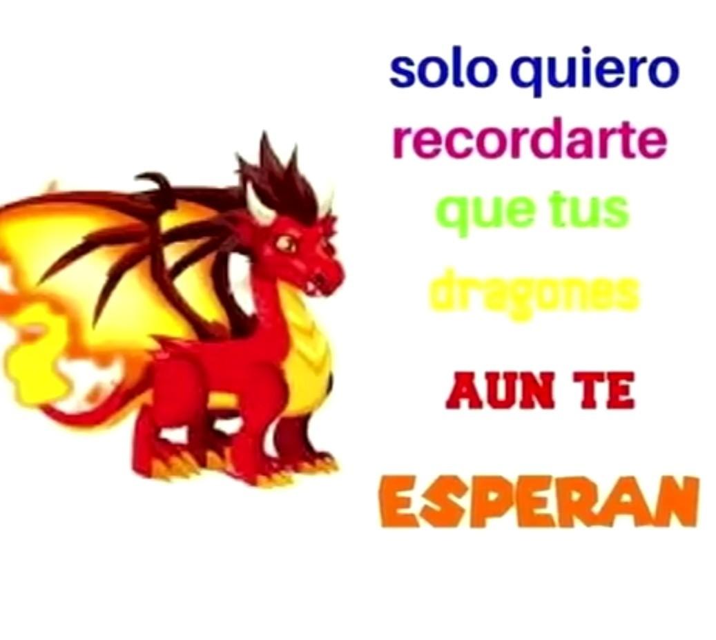Dragon city - meme