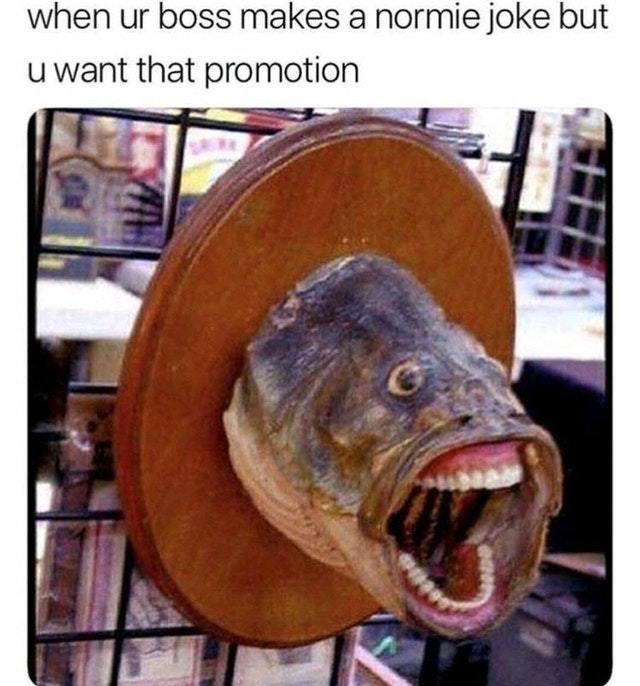 Boss joke - meme