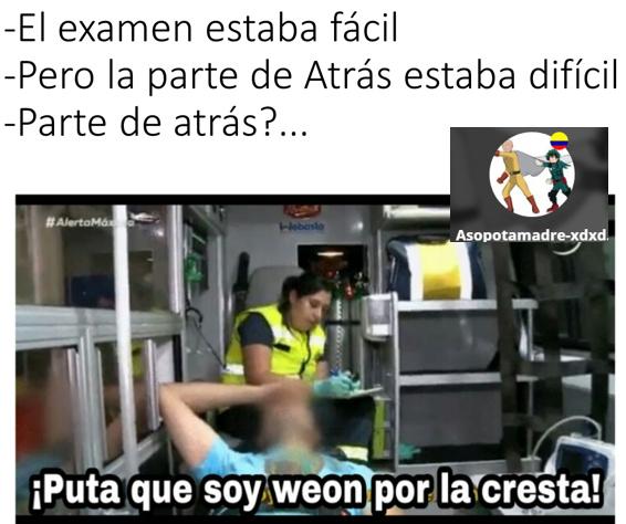 PUTA WEON! - meme