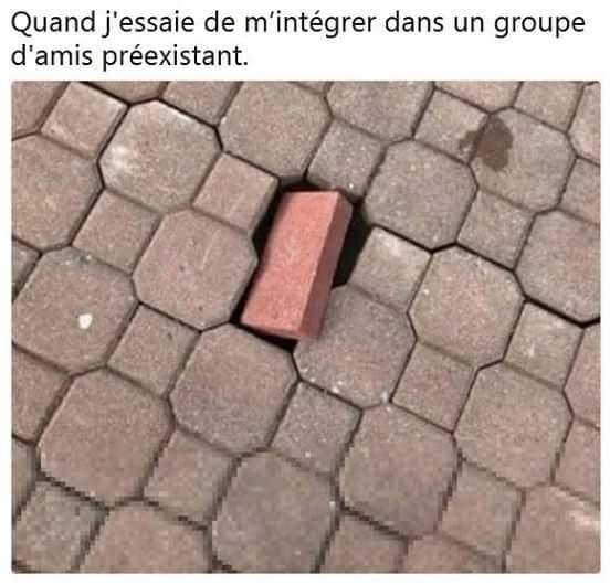 Tache - meme