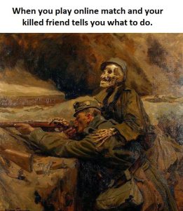 When you play online match and your killed friend tells you what to do - meme