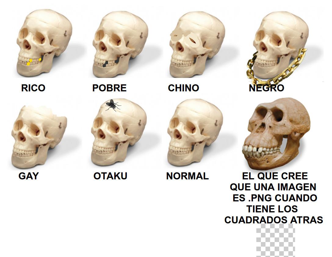 No a la discriminación - meme