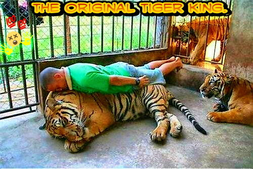 Tiger King but straight. - meme