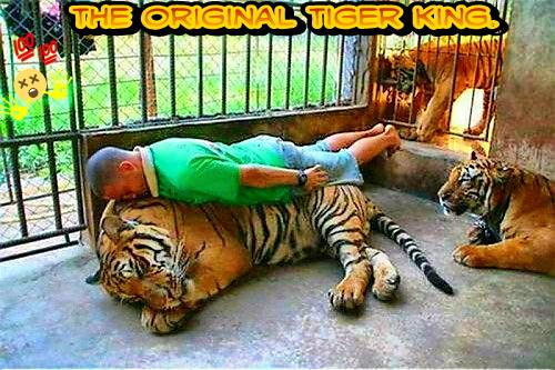 Tiger King but straight. - meme