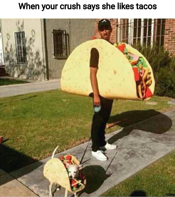 I didn't choose the taco life the taco life chose me - meme