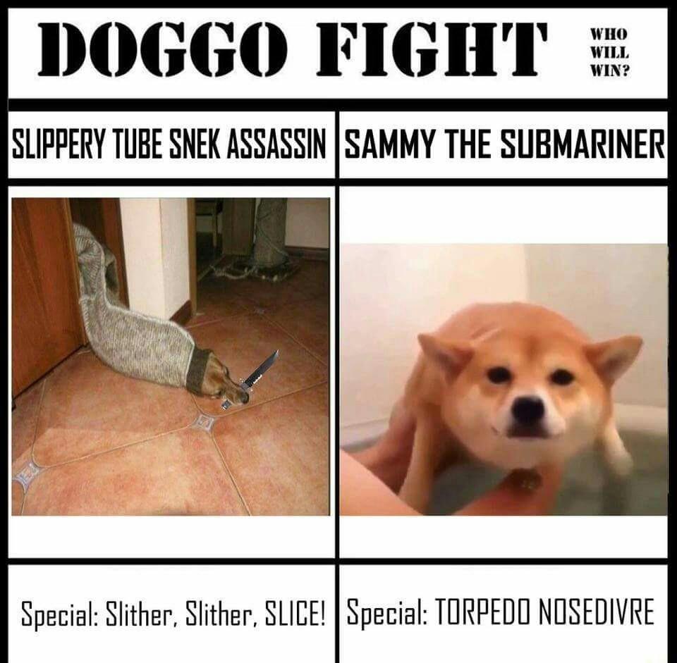 Snake doggo - meme