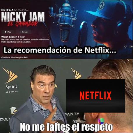 Pinche Netflix - meme