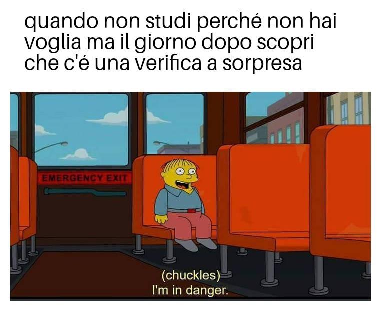 Il pulcino pio - meme