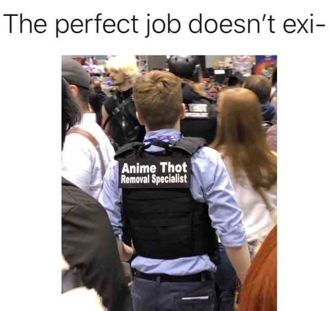 The perfect job doesn't exi- - meme