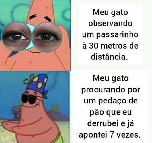 Patrick é um meme do caralh@