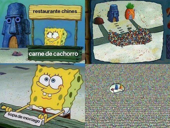 Pratos tipicos - meme