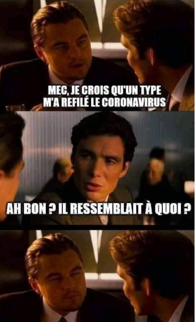 Effectivement - meme