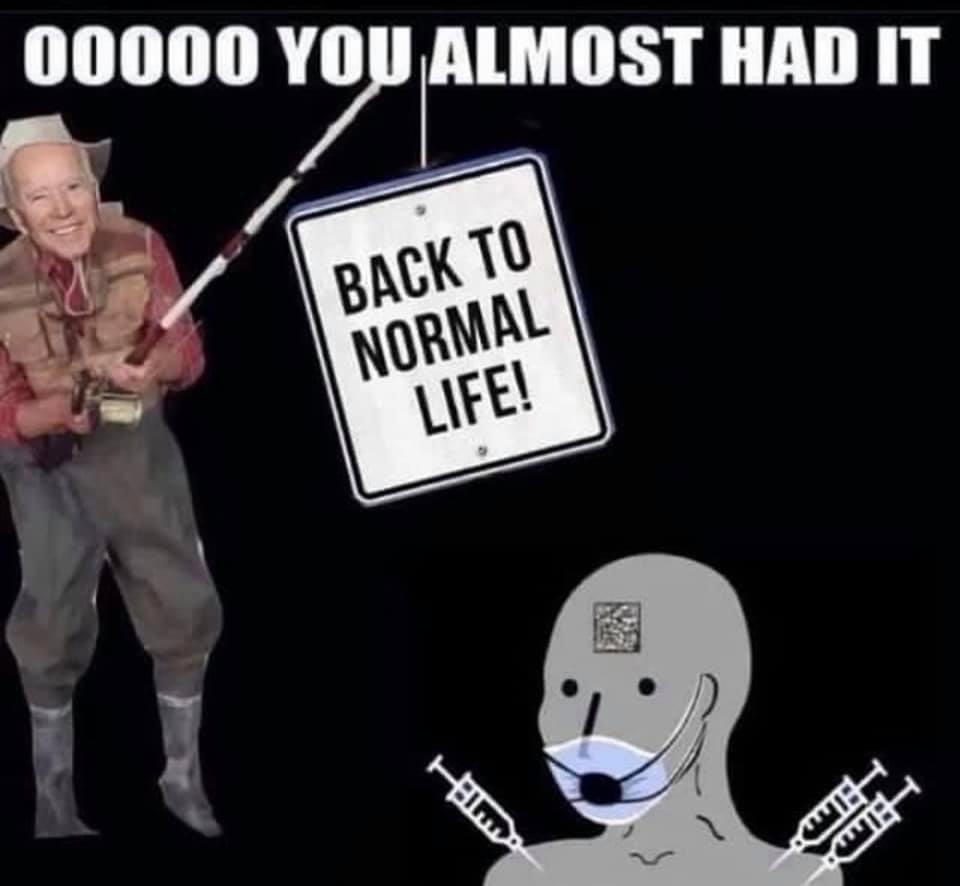 dongs in a bait - meme