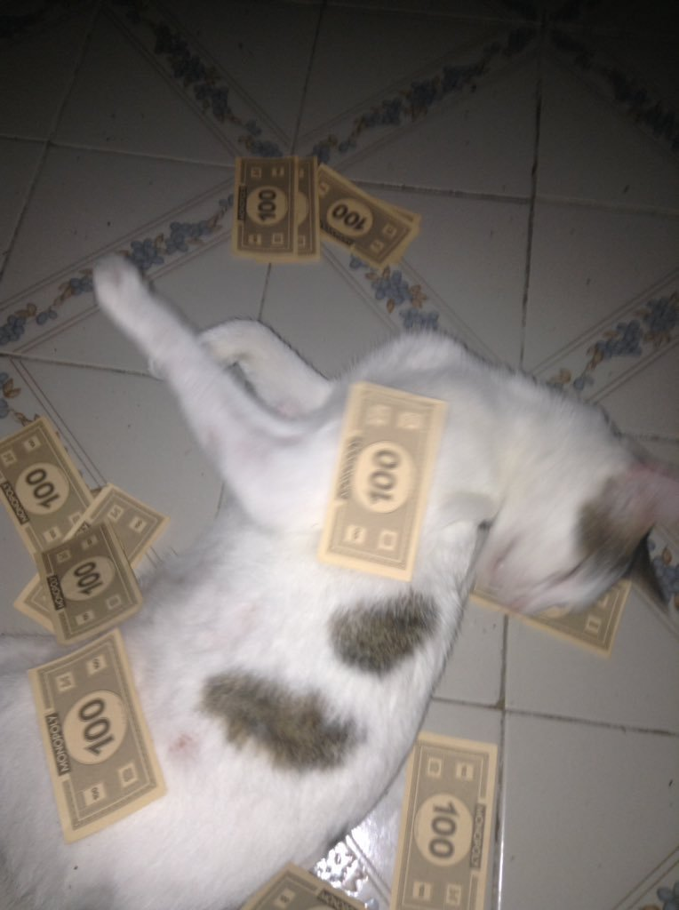 Drug money 0x0 - meme