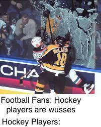 Hockey is crazy - meme