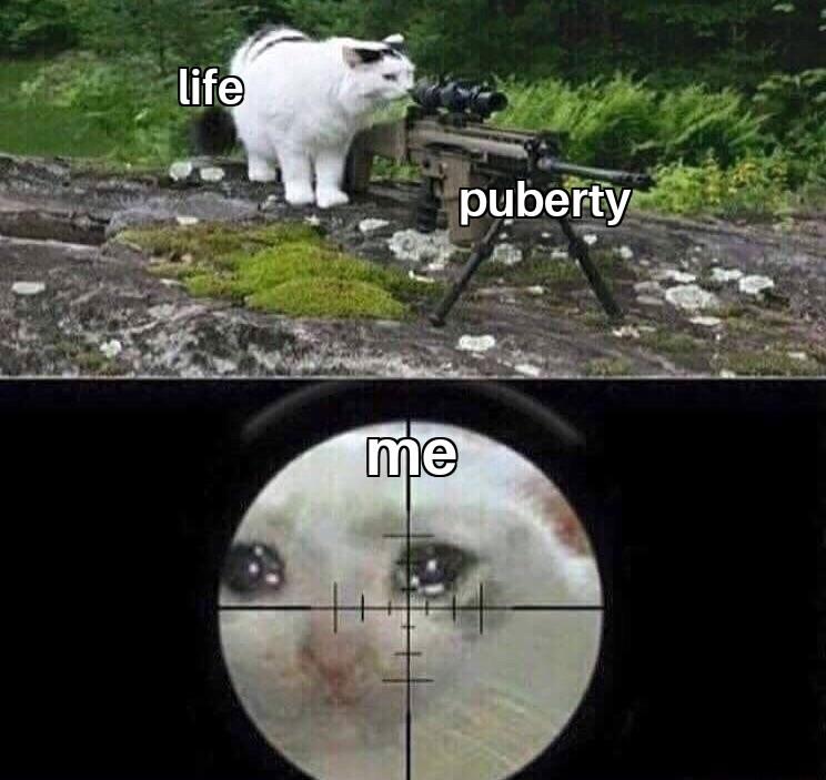 Pains - meme