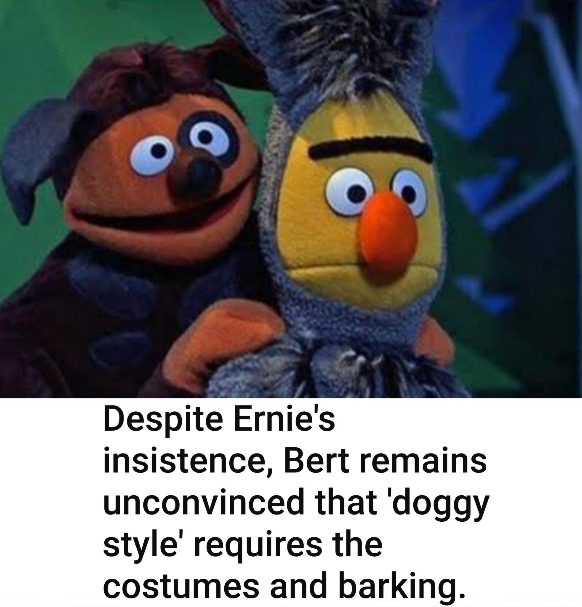 The Best Bert And Ernie Memes Memedroid
