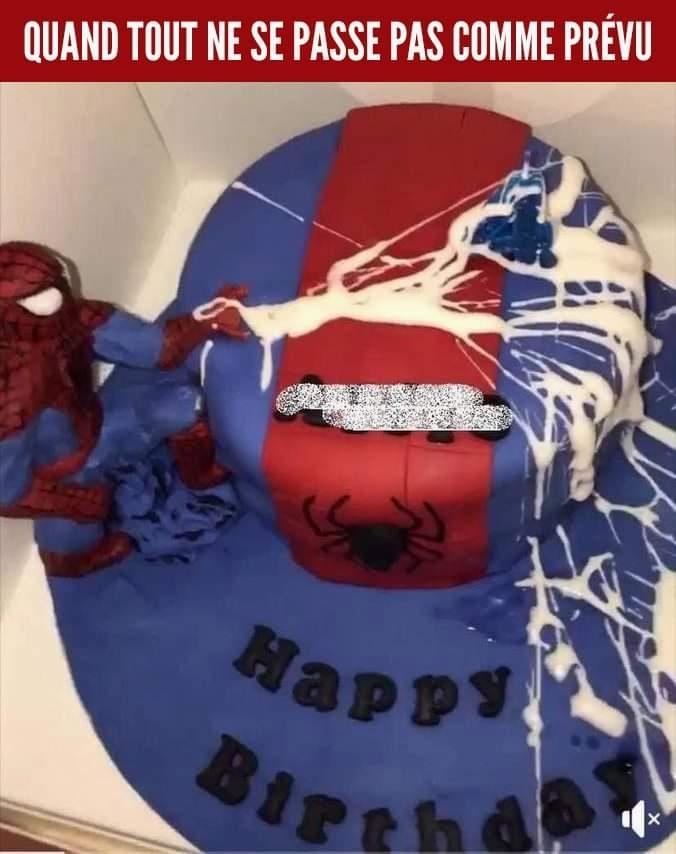 Je crois que Spiderman s'est fait plaisir - meme