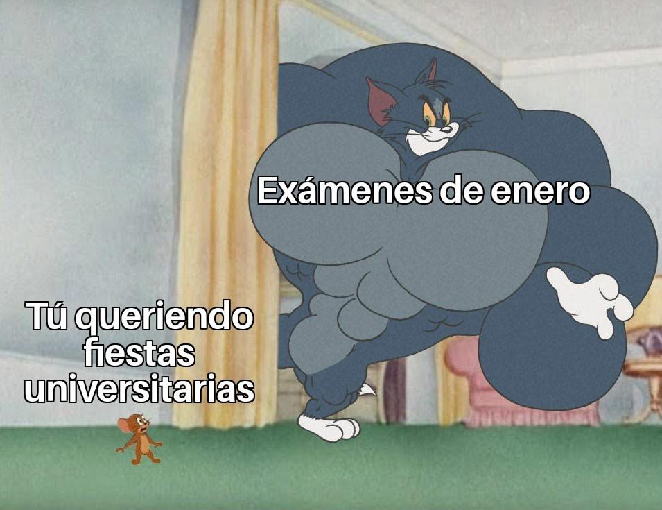 Meme 227