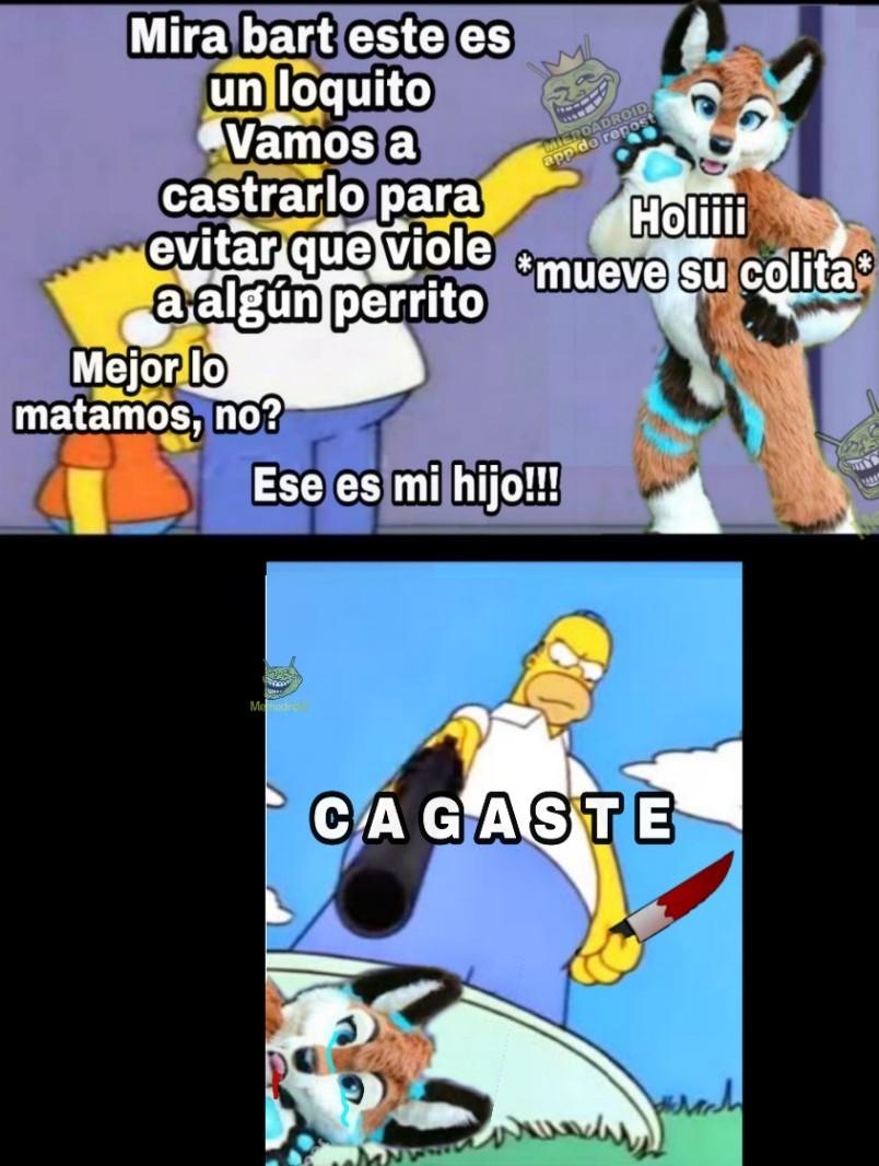 CAGASTE, FURRY DE MIERDA!!! - meme