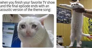 Dang... - meme