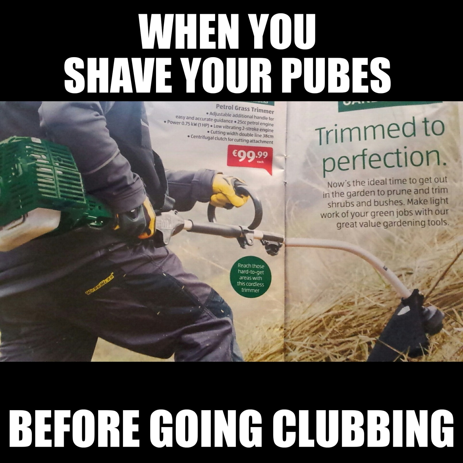 Trimmed to perfection - meme