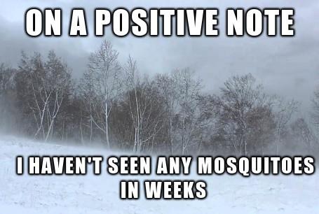 Ohio - meme