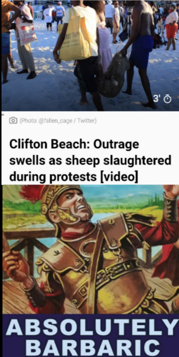 Idiots slaughtered 3 sheep as a protest last December... - meme