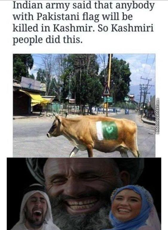 Holy cows - meme