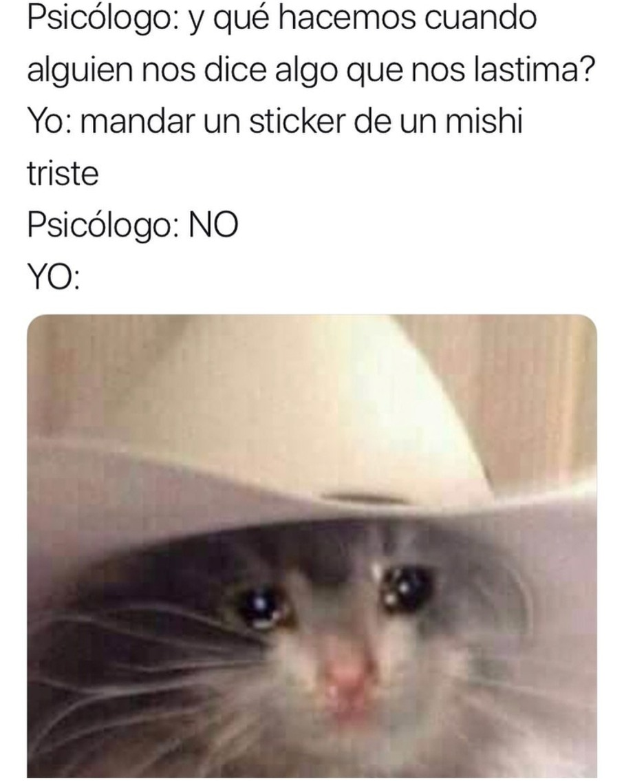 Mishi triste - meme