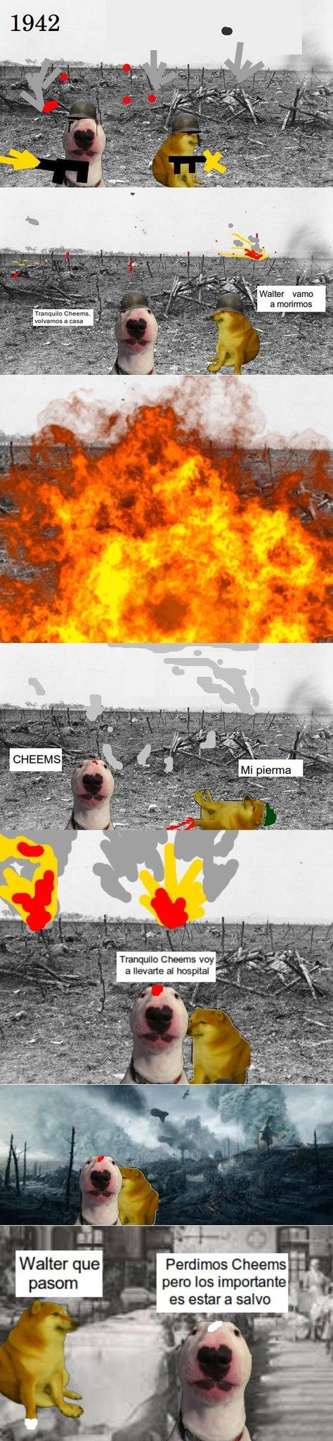 Guerra de cheems - meme
