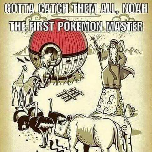 Gotta catch em all - meme