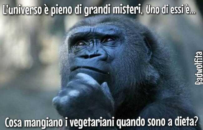 By Polistirolo999