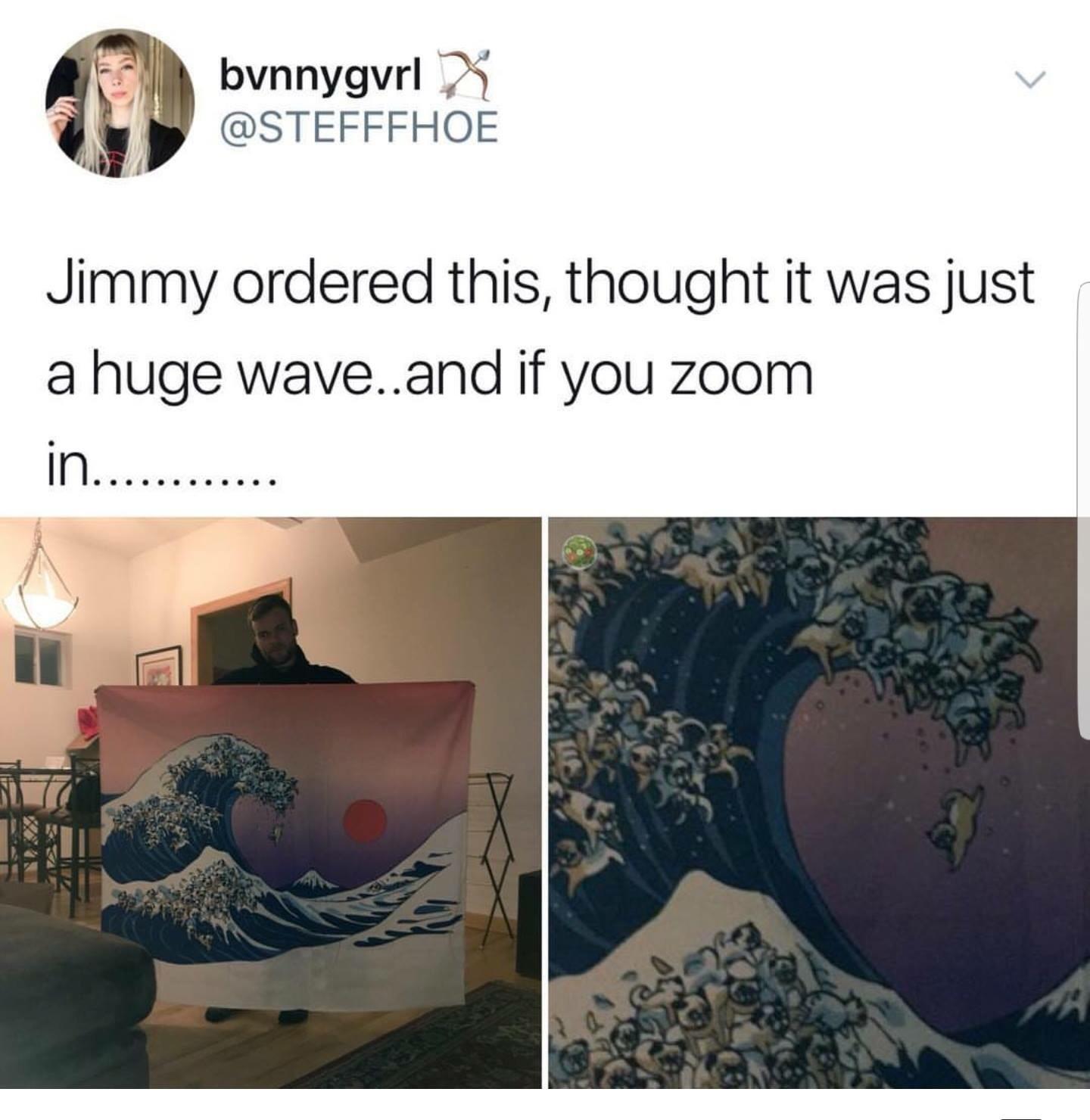 pug wave - meme