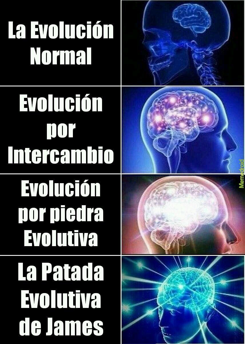 Tipos de Evolución - meme