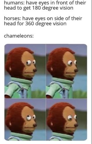 Meme #8?