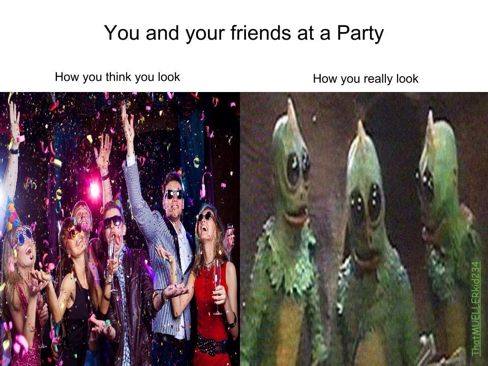 party people - meme