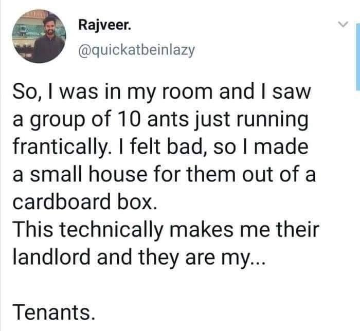 10 ants - meme