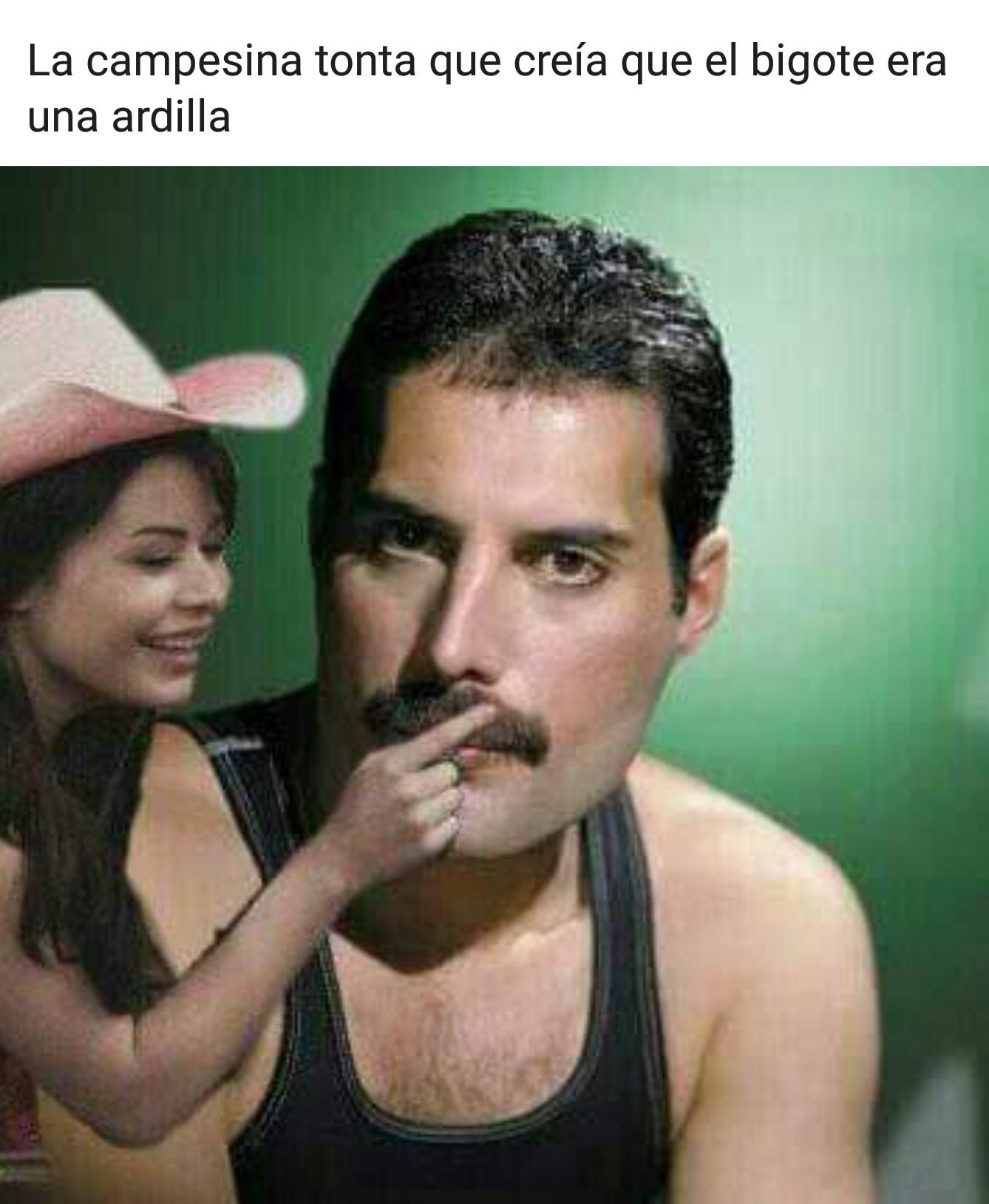 Ardilla - meme