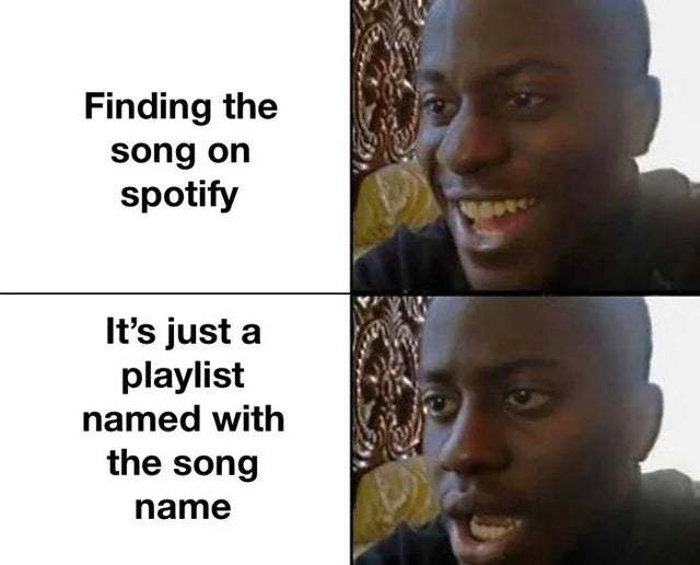 Finding the song on Spotify - meme