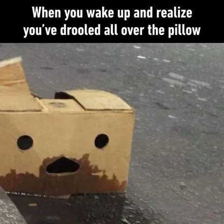 Everytime i droole over my pillow i know i slept real good - meme