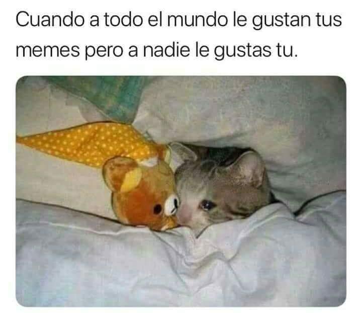 how sad. - meme