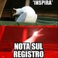 Gabbiani4ever