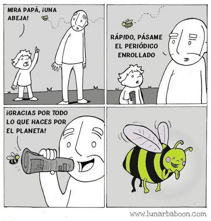 Vivan las abejas :son:7 - meme