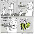 Vivan las abejas :son:7