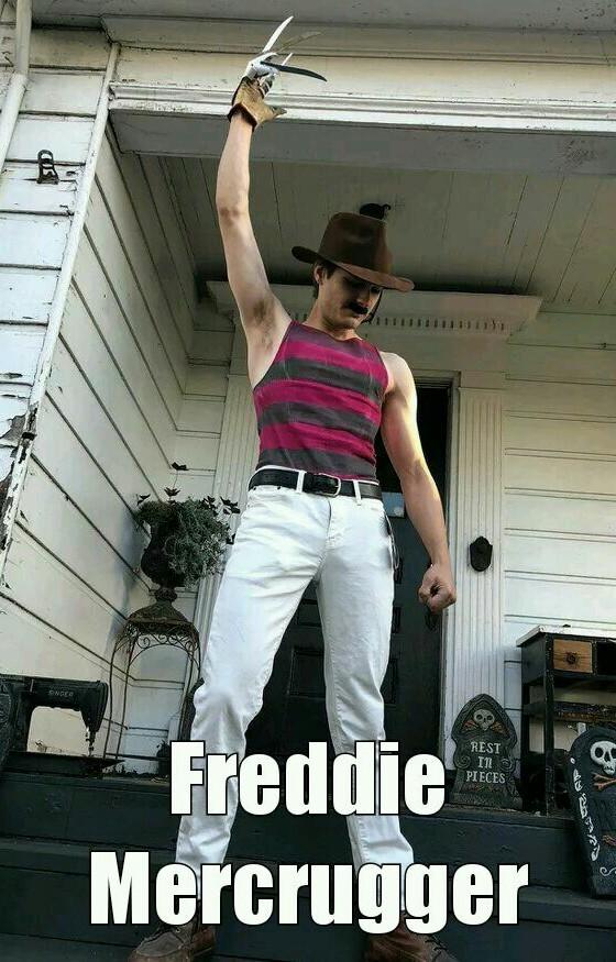 Freddie - meme