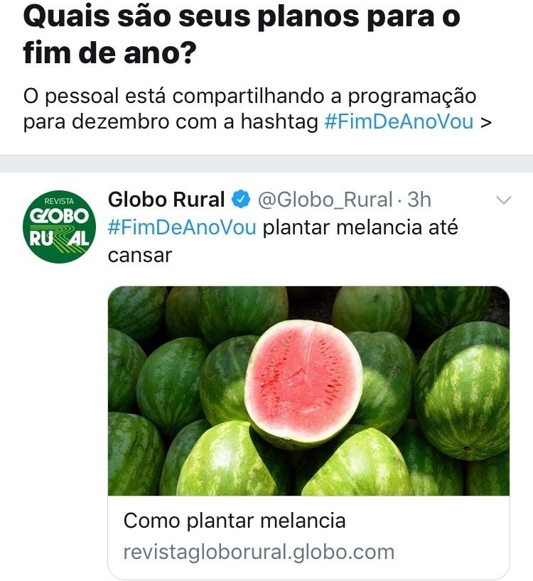 título foi plantar melancia - meme