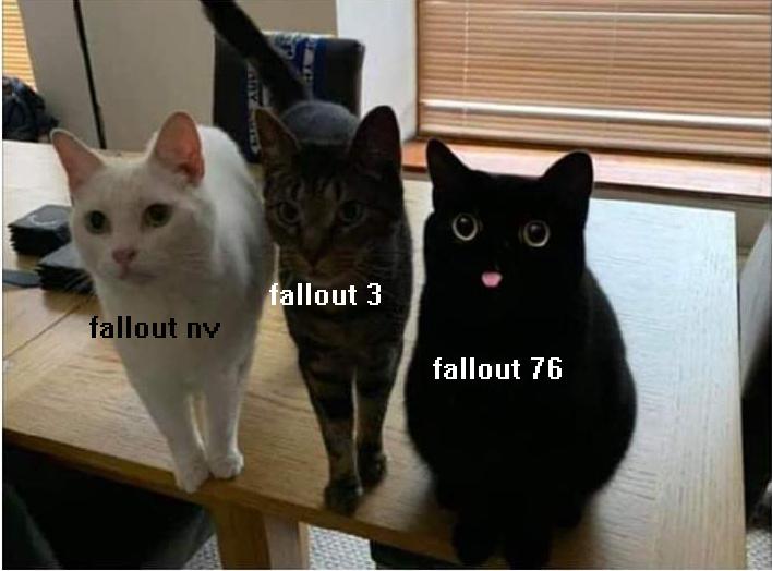 el titulo esta jugando fallout - meme
