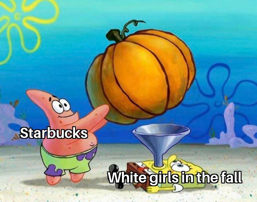 Pumpkin spice - meme