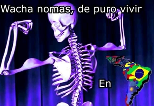 Wacha - meme